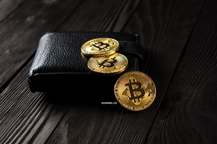 5 Hal mengenai Trust Wallet yang Wajib Diketahui