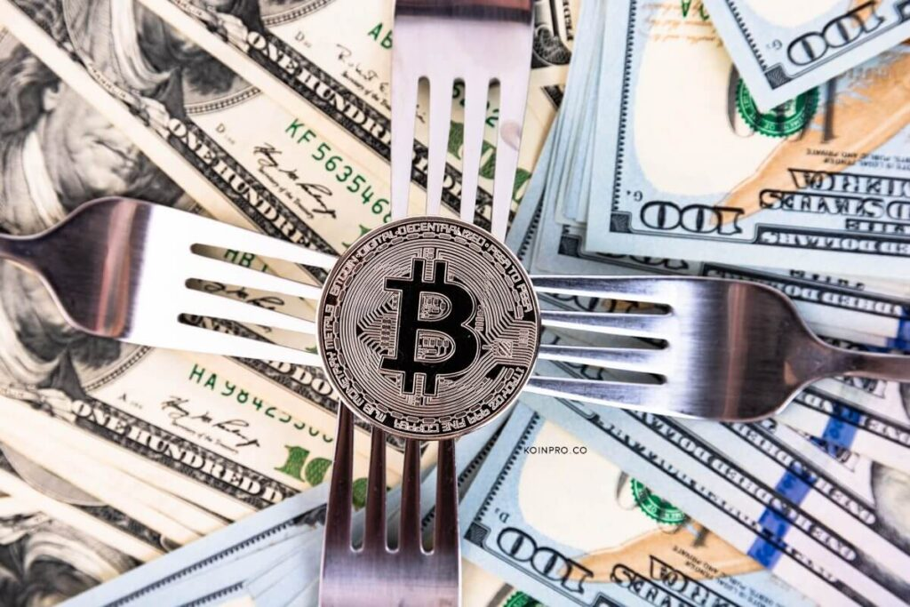 Arti Fork dalam Blockchain: Pemula Harus Tahu!