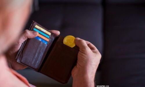 Tip Memilih Crypto Wallet yang Oke untuk Pemula