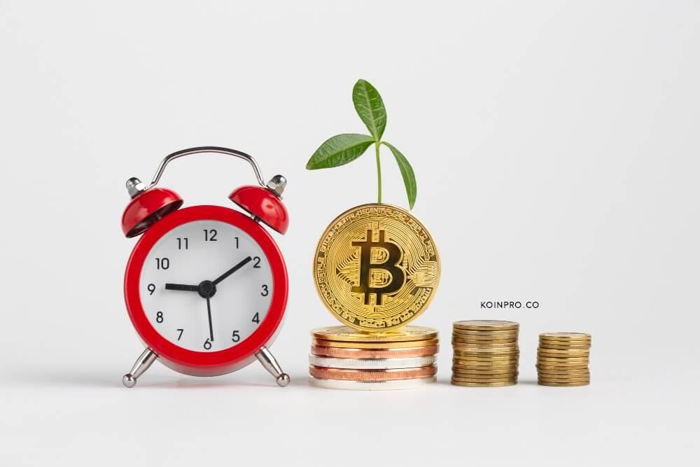 Perbedaan Koin dan Token, Trader Crypto Harus Tahu!